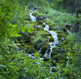 Waterval op Groene Berg Royalty-vrije Stock Foto's
