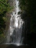 Waterval op Hana Highway Maui Hawaii Stock Afbeelding