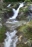 Waterval op het gebied van Bergen Mourne Stock Fotografie
