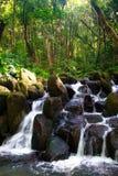 Waterval op Kauai Stock Foto's