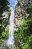 Waterval op rand van regenwoud. stock afbeelding