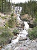 Waterval op verscheidene niveaus in Jasper National Park Royalty-vrije Stock Afbeeldingen
