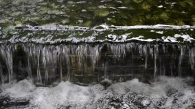 Waterval in Park stock video