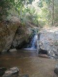 Waterval in Park stock foto's