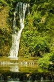 Waterval in platteland Stock Foto