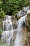 Waterval in Regenwoud Stock Afbeelding