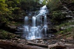 Waterval in Ricketts Glen State Park in kernachtig de Herfstweer stock foto