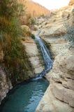 Waterval in rotsen Ein Gedi israël Stock Fotografie