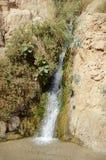 Waterval in rotsen van het Dode Overzees van Ein Gedi Royalty-vrije Stock Afbeelding