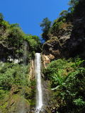 Waterval Salitral Costa Rica Stock Afbeelding