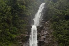 Waterval ` Salto DE Chilasco ` Guatemala Stock Afbeeldingen