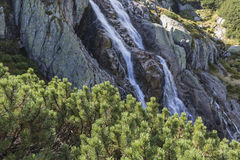Waterval Siklawa in Tatra-Bergen Royalty-vrije Stock Fotografie