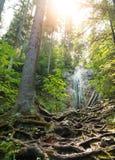 Waterval in Slowaaks Paradijs royalty-vrije stock afbeeldingen