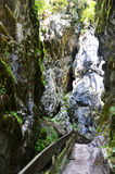 Waterval Stanghe, Trentino Alto Adige, Italië Stock Foto's