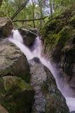 Waterval in Sugarloaf Ridge State Park, Sonoma-vallei, Californië royalty-vrije stock foto's