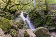 Waterval in Sugarloaf Ridge State Park, Sonoma-vallei, Californië royalty-vrije stock foto