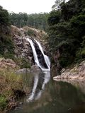 Waterval Swasiland Afrika Stock Foto's