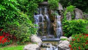 Waterval in tropische tuin stock videobeelden