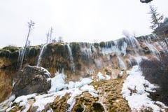 Waterval van een klip in het bos stock afbeelding
