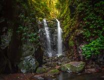 Waterval van het Lamington de Nationale Park Royalty-vrije Stock Foto's