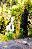 Waterval van het Yellowstone de Nationale die Park door bossen en klippen wordt omringd royalty-vrije stock afbeeldingen