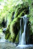 Waterval van Plitivice-park in Kroatië Stock Foto