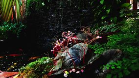 Waterval van tuin de kleurrijke installaties stock video