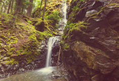 Waterval in Vancouver Royalty-vrije Stock Foto's