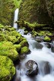 Waterval in weelderig regenwoud, de Rivierkloof van Colombia, Orego Stock Afbeeldingen