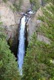 Waterval in Yellowstone Stock Afbeeldingen