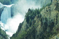 Waterval in Yellowstone Royalty-vrije Stock Afbeelding