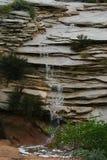 Waterval in Zion Royalty-vrije Stock Foto's