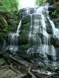 Watervallen in Australië Stock Afbeeldingen