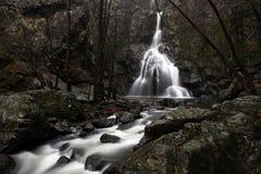 Watervallen bij de Herfst stock afbeelding