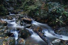 Watervallen bij de Herfst, stock fotografie