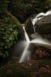 Watervallen bij de lente, in bos. Stock Foto's