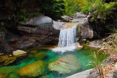 Watervallen in bos Royalty-vrije Stock Foto's