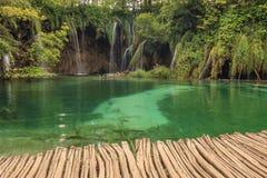 Watervallen in bos, het Nationale Park van Plitvice, Kroatië Royalty-vrije Stock Afbeelding