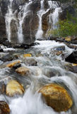 Watervallen, Dalingen in Canadees Rocky Mountains stock foto's