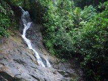 Watervallen in de ochtend stock footage