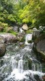 Watervallen in de tuin van Kyoto, het park van Holland, Londen stock fotografie