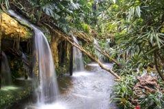 Watervallen in een tropische tuin Royalty-vrije Stock Afbeeldingen