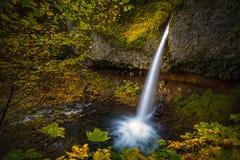 Watervallen en de herfstbladeren Royalty-vrije Stock Foto's