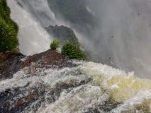 Watervallen Gezichtspunt van de Iguazu-dalingen opdrachten argentinië stock afbeeldingen