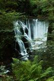 Watervallen in Groen Royalty-vrije Stock Afbeelding