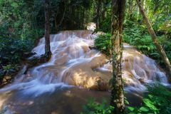 Watervallen in het midden van het bos Royalty-vrije Stock Foto