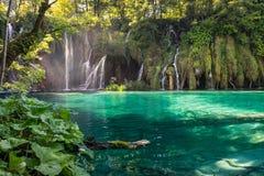 Watervallen in het Nationale Park van Meren Plitvice stock foto