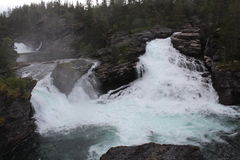 Watervallen in het Noorse bos Royalty-vrije Stock Foto's