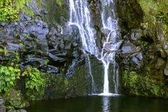 Watervallen op Flores-eiland, de archipel van de Azoren (Portugal) royalty-vrije stock foto's