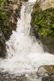 Watervallen in regenwouden en wolk Royalty-vrije Stock Fotografie